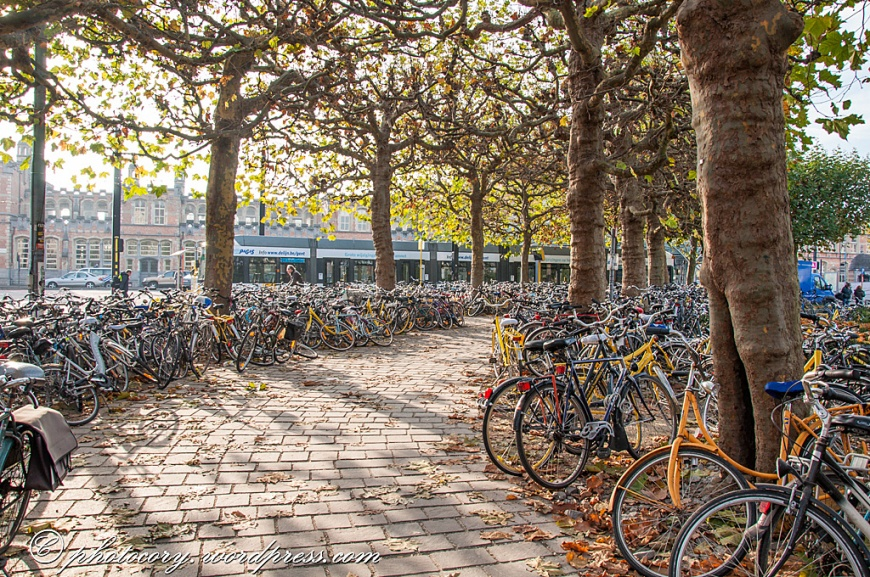 Very echo friendly city! Hundreds of bikes next to train station in Ghent.