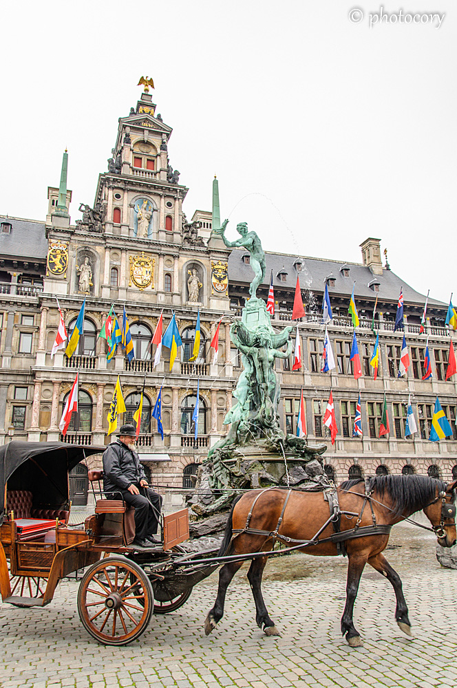 horse and carriage in front of the Town hall