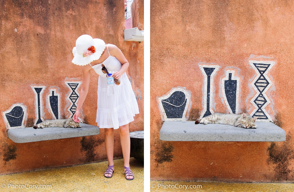 cat positano brick color wall