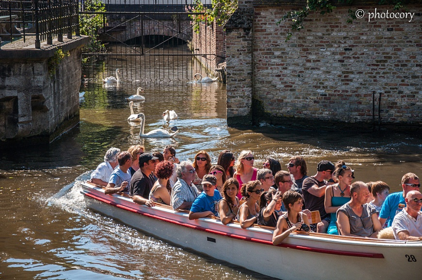 Boat trip and swans next to The Beguinage