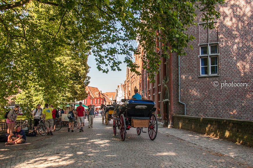 Horse and carriage in Bruges, a fun way for sightseeing!