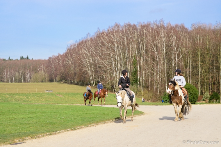 horse riding la hulpe brussels