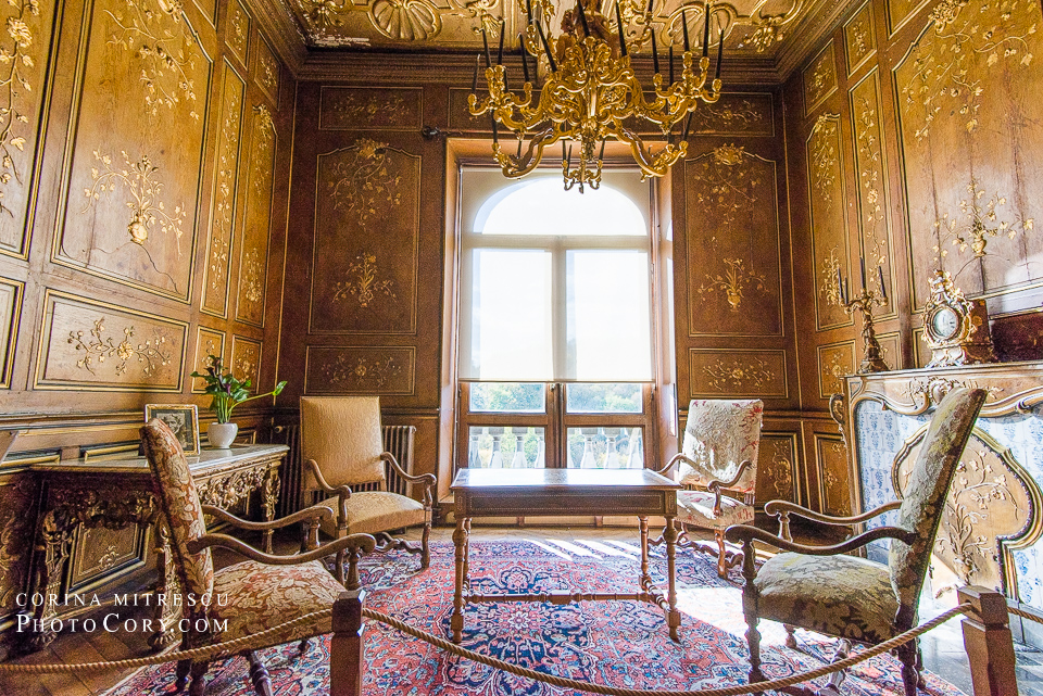 modave carpet chairs