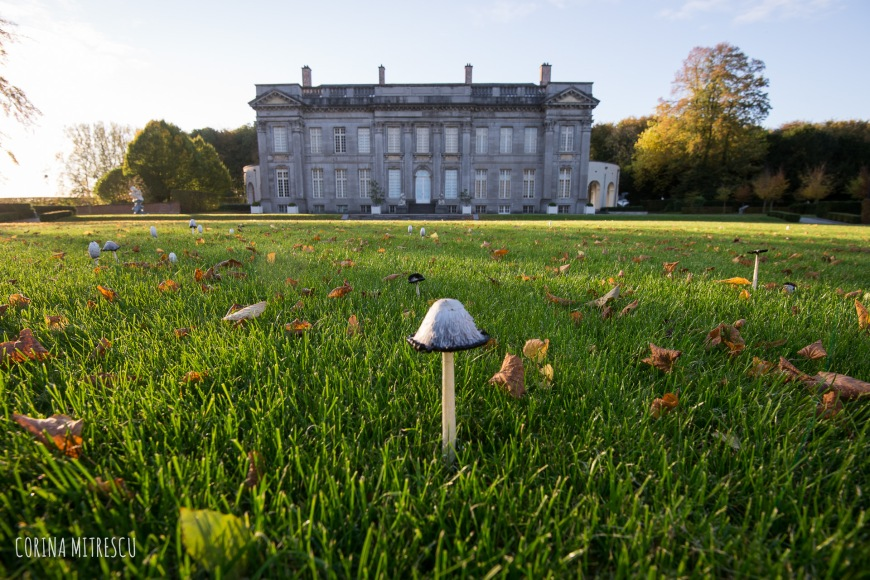 mushroom in front of the castle