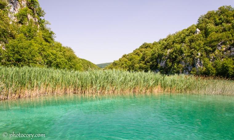 Gorgeus turquoise