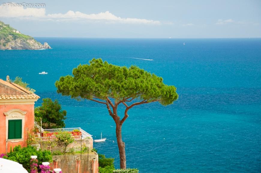 tree italy blue sea