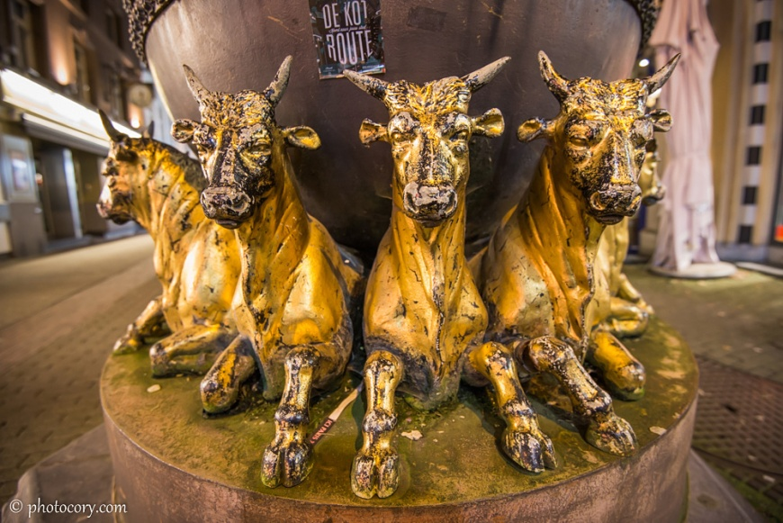 Some ornament with bulls