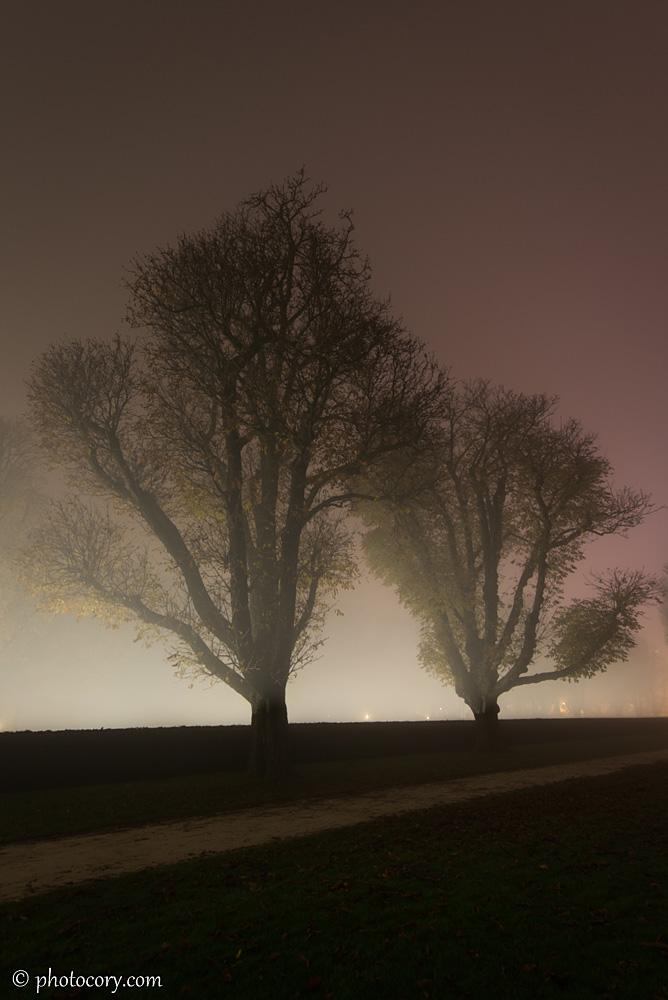 Fog park Cinquantenaire