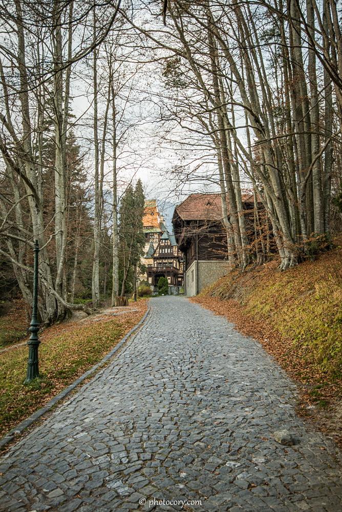Pathway towards Pelisor