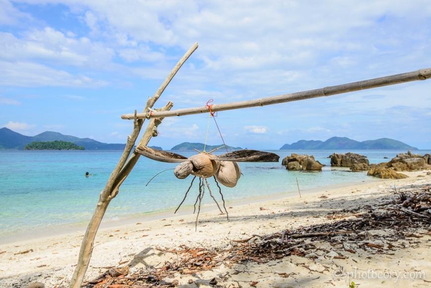 bee at koh wai beach