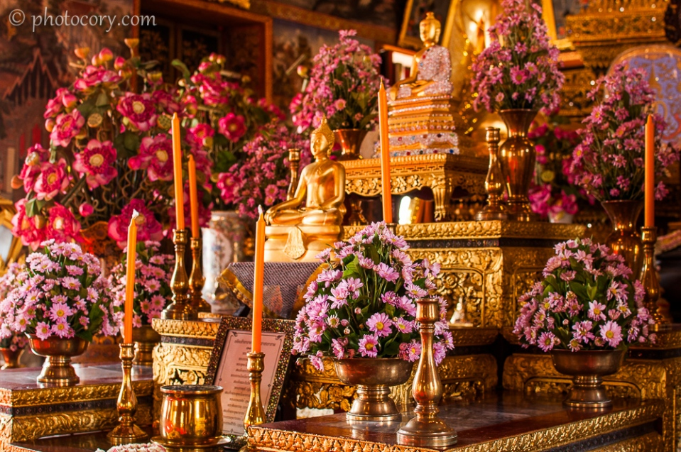 Beautiful flowers at Wat Arun/Flori proaspete in templul Arun