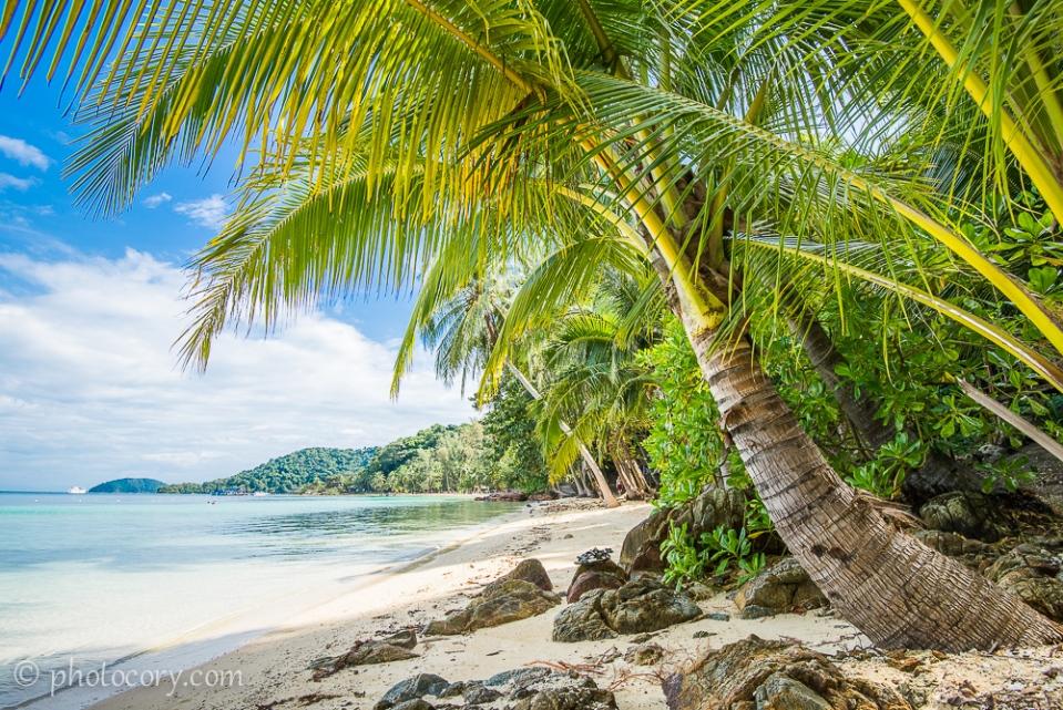 Palmtree beach koh wai