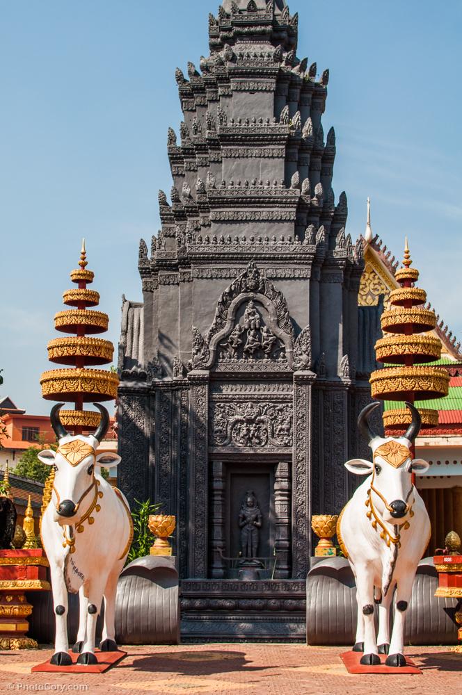 Cows at temple / nu am inteles ce era cu vacile astea la templul Wat Preah Prohm Roth