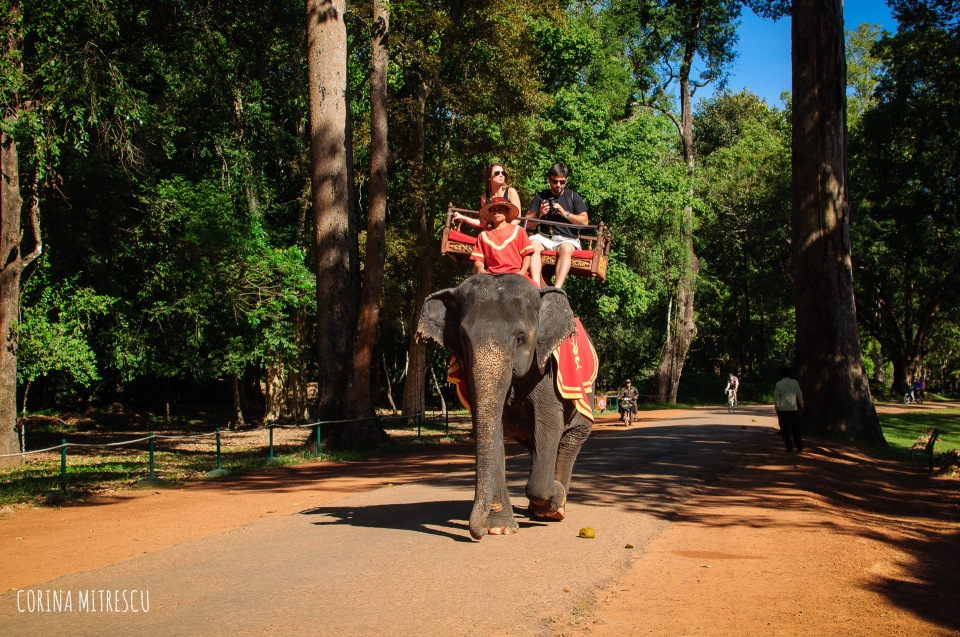 elephant ride at bayon temple siem reap cambodia angkor