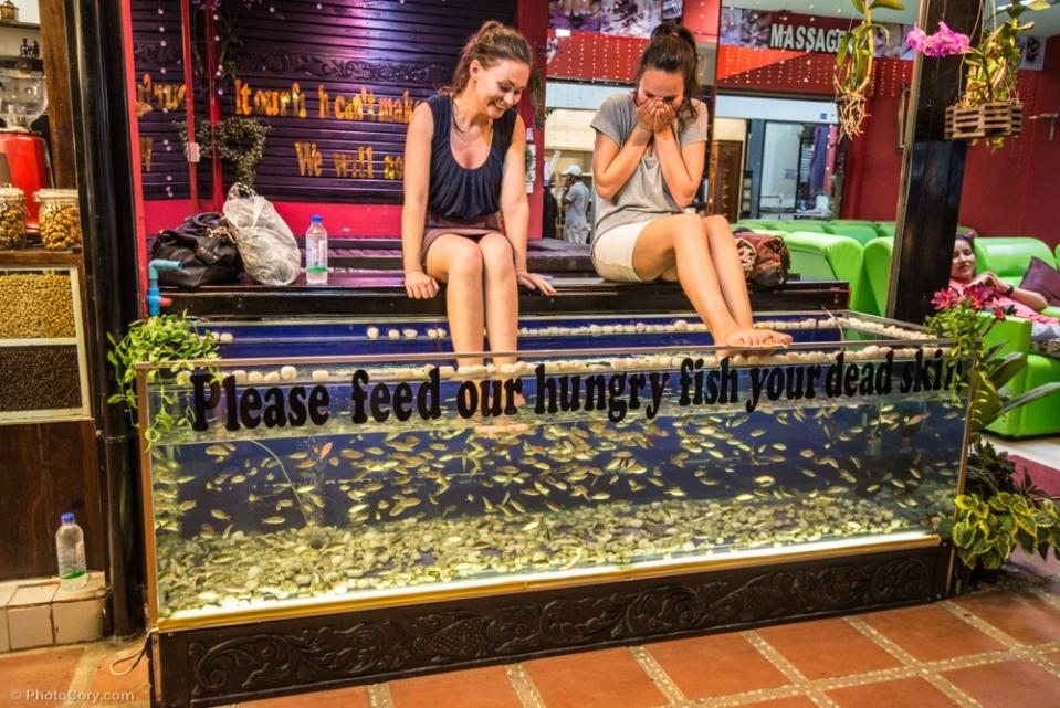 "you put your feet in this aquarium and the fish eat your dead skin / Iti pui picioarele in acvariu, iar pestii iti mananca pielea moarta de pe calcaie si degete. Pe acvariu scrie ""va rugam hraniti pestii nostri infometati cu pielea dumneavoastra"""