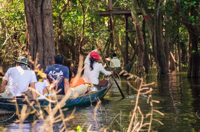 flooded forest tourists