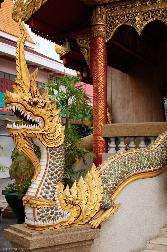 snake  temple thailand