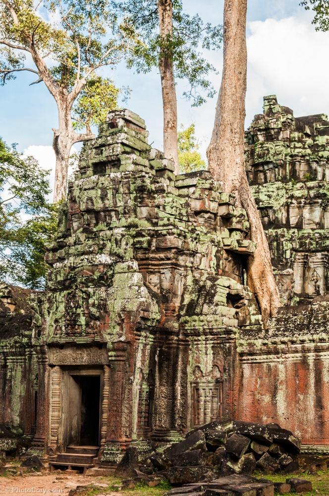 ta prohm angkor cambodia