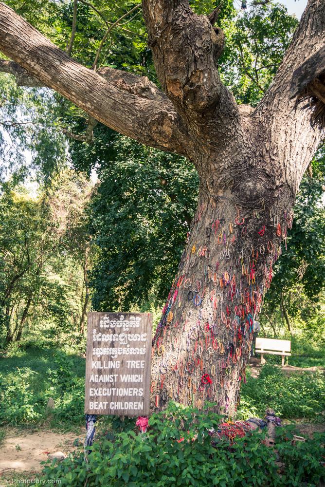 Killing tree against which executioners beat children / Copacul sub care se bateau copiii