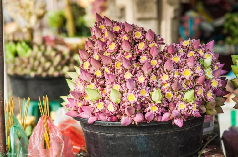 Water lilies at a local market / Flori de nuferi de vanzare la piata