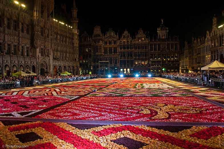 flower carpet brussels 2012