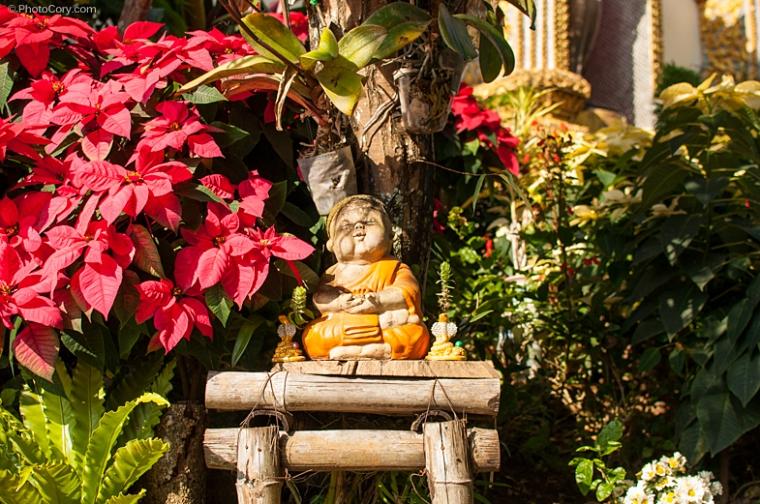 tiny buddha statue, chiang mai