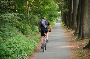 biking in sonian forest, brussels, foret de soignes