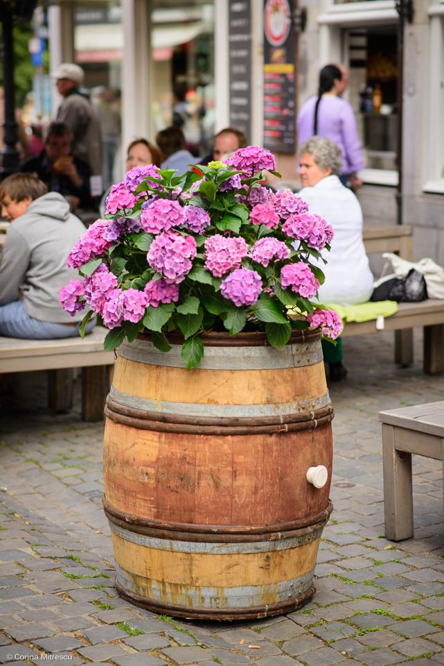 butoi cu flori, barrel with flowers