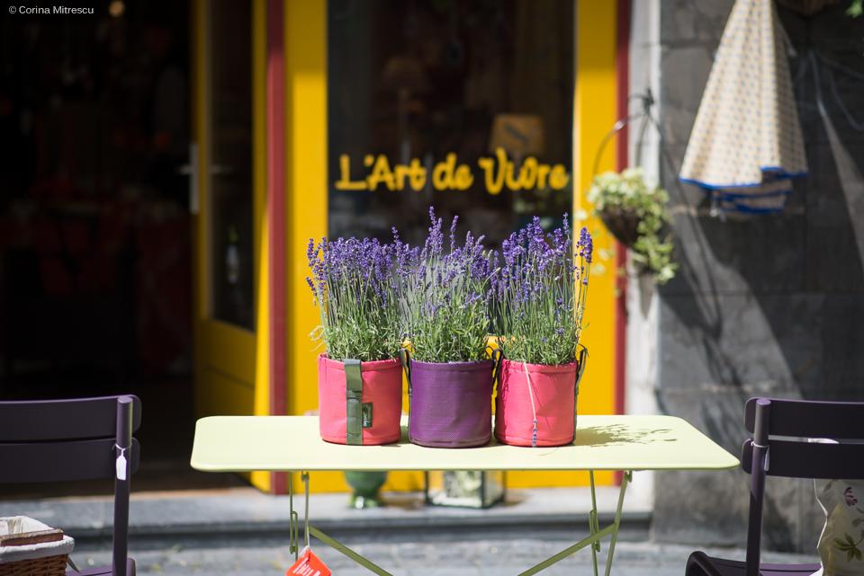 flori in ghiveci pe masa