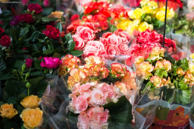 flowers sunday flagey