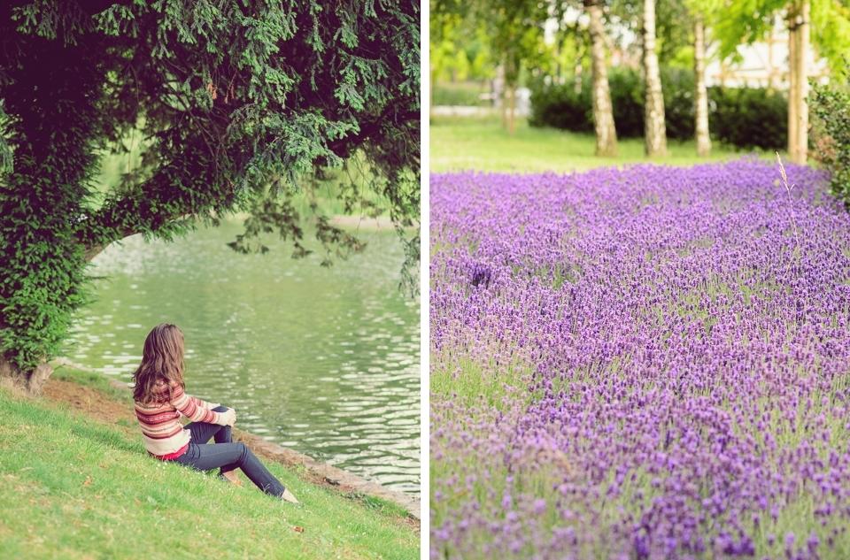 ixelles lakes flori mov