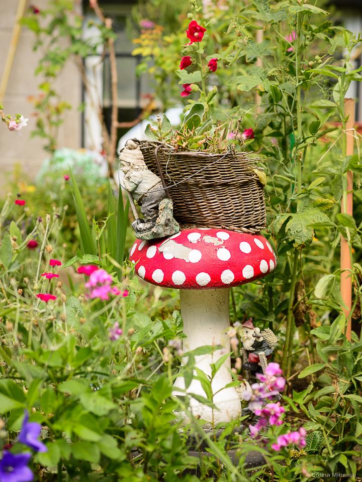 mushroom and two dwarves