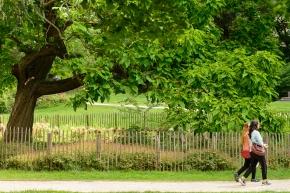 parc de l'abbaye, ixelles. brussels