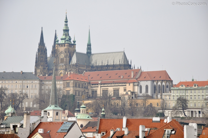 the cathedral of St Vitus in Prague castle
