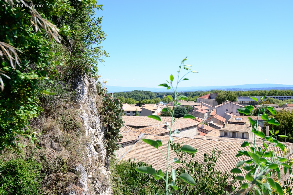 avignon view
