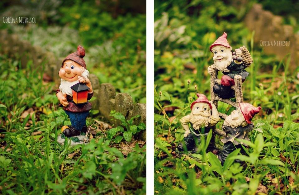 garden dwarfs