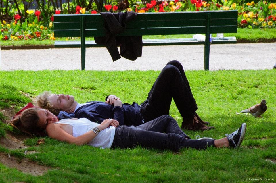 sleeping on grass in paris