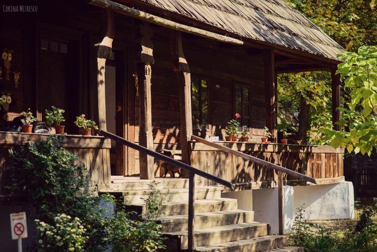 casa la muzeul satului din bucuresti
