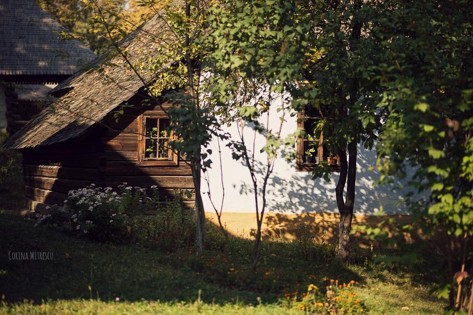 casa muzeul satului toamna
