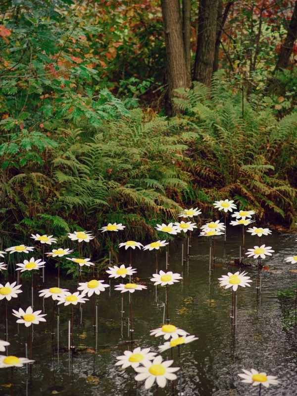flowers river hamont achel belgium