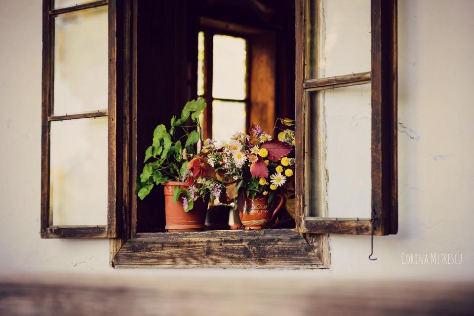 geam cu flori la muzeul satului din bucuresti