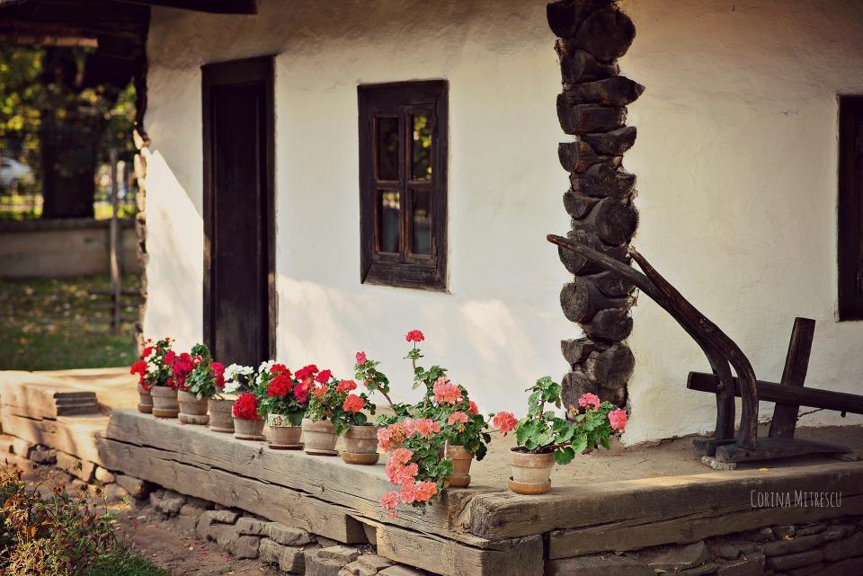 muscate la muzeul satului