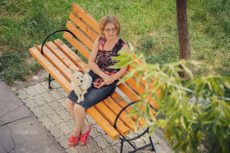 with dog on bench