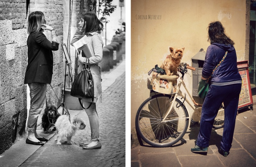 women and dogs
