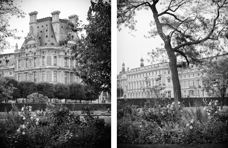 louvre, luvru, Jardin des Tuileries, black and white, autumn