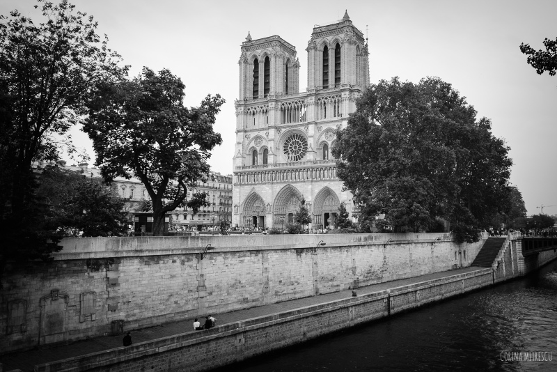 notre dame-de-paris- in black-and-white-the-seine