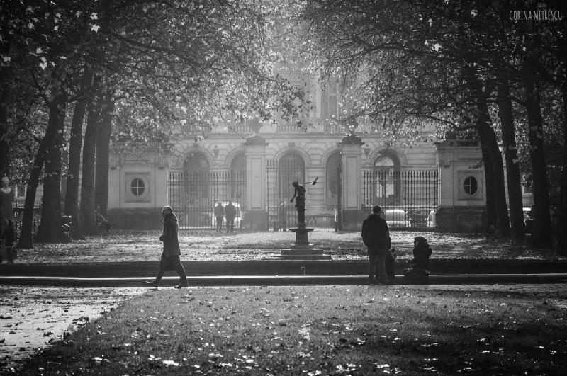 parc de bruxelles. blanc et noir