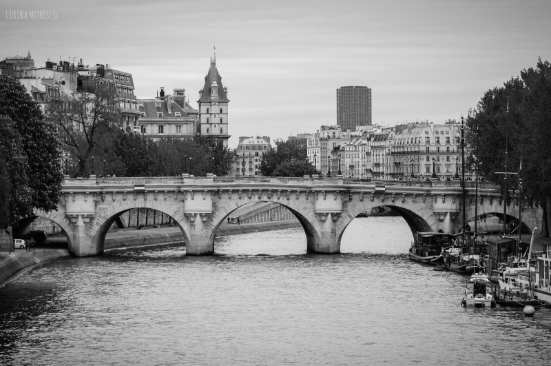 paris, bridge, seine, river, capital of france