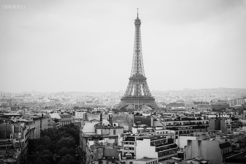 paris, view from triumph arch, eiffel tower, black and white