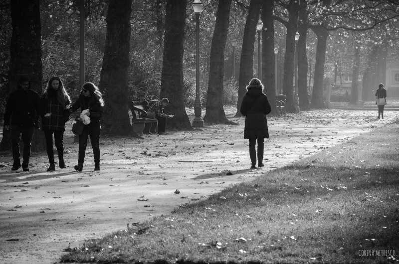 people walking in parc, black and white